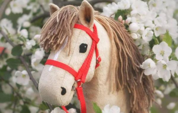 ZÁBAVNÝ TÝDEN PRO DĚTI Hobby Horse